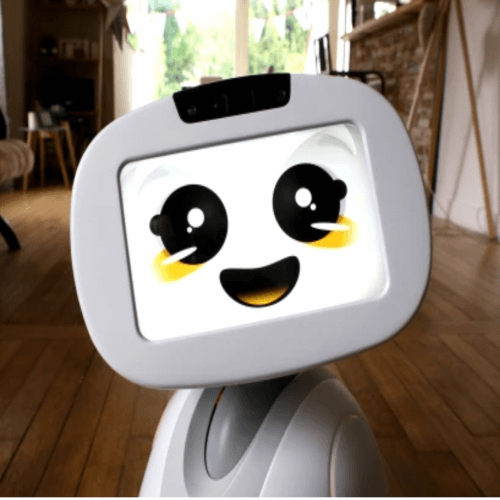 Family's Companion Robot
